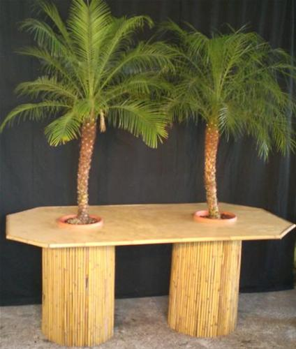 07.009 Statafel Natural groot incl. 2 palmen (totale hoogte ca. 300 cm)