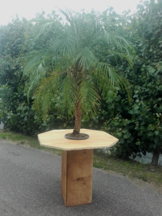 07.008 Statafel Natural klein incl. 1 palm (totale hoogte ca. 300 cm)